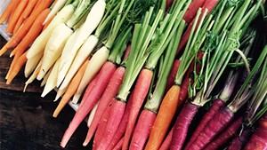 Bristol's Tandem Plans Winter Food Events
