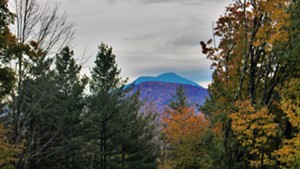 View of Camel's Hump from the land proposed for Richmond town forest