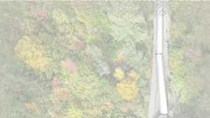 Wren Kitz, untitled