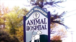 Best veterinarian/animal hospital