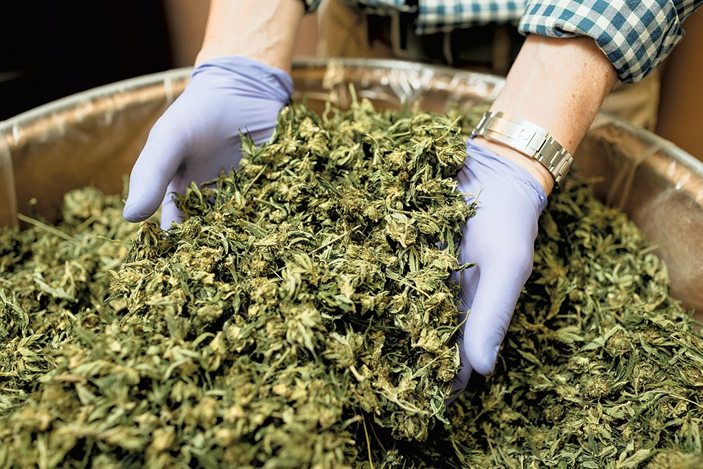 Rules Would Put a Premium on Hemp Products Made in Vermont