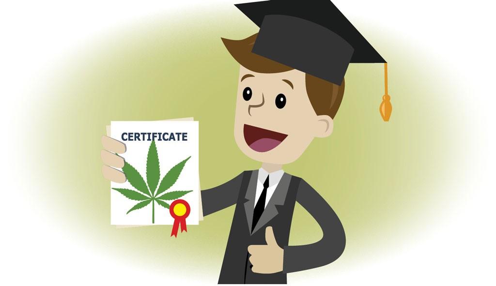 Castleton Adds Cannabis Program to Vermont's Higher Ed Scene