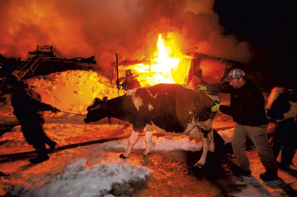 Critter Meadows Farm fire in 2014 - STEFAN HARD