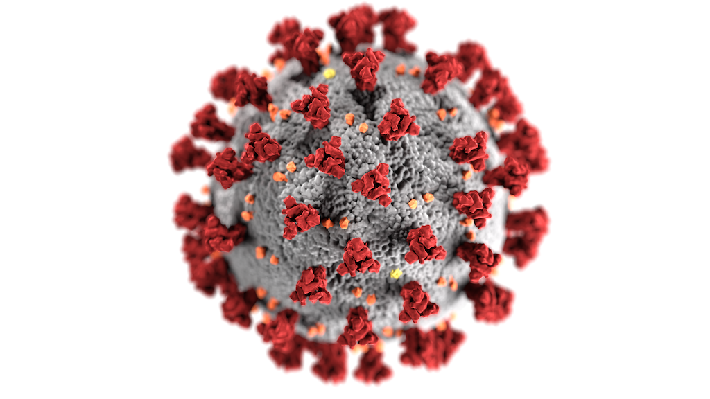 A model of a coronavirus like the one that causes COVID-19 - CENTERS FOR DISEASE CONTROL AND PREVENTION