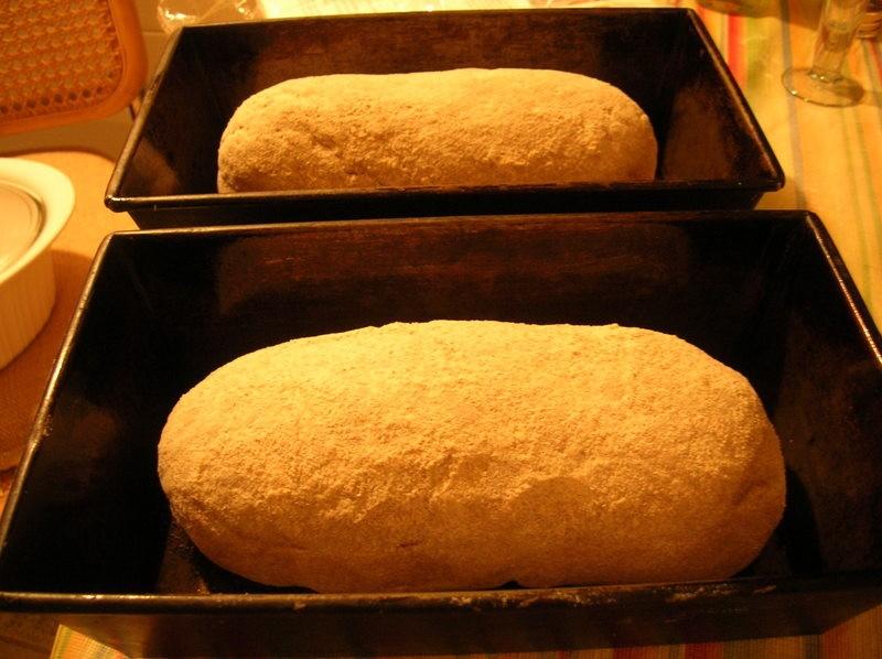 bread_unrisen_1.jpg
