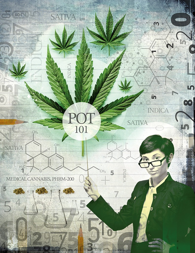 c5f3242dfc UVM s Cannabis Class Fires Up Interest in Science