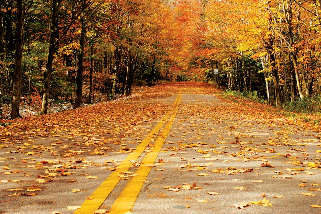 Rode Relax Fauteuils.Scenic Route Hit The Road For Fall Foliage Btv Magazine Seven