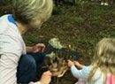 Fairy House Festival: Celebrating Fairies, Gnomes & Elves