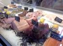 Bridge Street Butchery Reopens in Waitsfield
