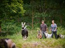 'Back to the Land Redux: Vermont's New Generation of Artist-Farmers'