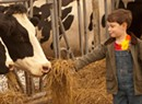 From Robot Milkers to Microchips: My Cabot Farm Field Trips