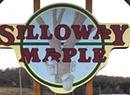 Silloway Maple