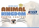 Vote for your favorite pet photos