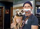 Bottom Line: Through the Pandemic, Oh My Dog Keeps the Pups at Play