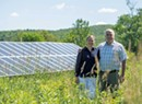 With Bee the Change, Weybridge Couple Fills Solar Fields With Insect-Friendly Habitat