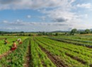 Nonprofits Pledge to Use Millions to Diversify Farm Ownership in Vermont