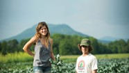 Fields of Dreams: Farm-Fresh Fun Close to Burlington