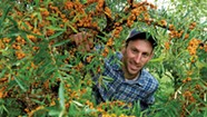 At His Plainfield Nursery, Nicko Rubin Cultivates Permanent Roots