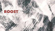 Album Review: Roost, 'Self-Titled'