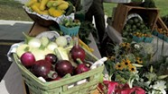Vergennes Farmers Market Returns to Downtown Green