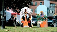 Enosburg Falls Harvest Festival