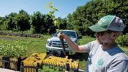 It's Tree Time: Fall Planting Leads to Spring Awakening