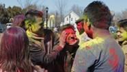 Holi Festival of Colors [SIV437]