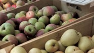 Windfall Orchard Starts Dinner Series