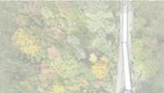 Wren Kitz, <i>untitled</i>