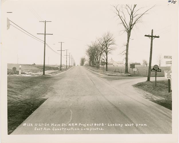 Photos: Burlington's Trees Through the Ages