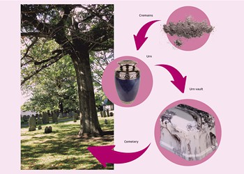 WTF: Why Do Cemeteries Require Urn Vaults for Burying Cremains?