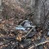 Deer-ly Departed: Carcass Prompts Bureaucratic Runaround