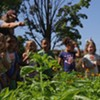 Stuck in Vermont: Kids Learn and Eat in a Burlington Elementary School Garden