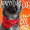 Album Review: Adventure Dog, 'The Dog House'