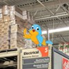 WTF: How Do Big-Box Stores and Airports Deal With Nuisance Birds?