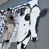 Muralist DJ Barry Brings World Cow to Montpelier