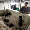The Alchemist Cannery and Brewery Go High-Tech to Keep the Water Clean