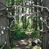 A Public Art 'Portal' Appears in Burlington Woods