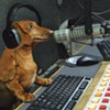 "In Memoriam: Hobbes, Canine Host of the ""Bruce & Hobbes"" Radio Show"