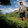New Farms for New Americans Lands Competitive Grant