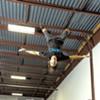 Training Like a Ninja Warrior