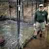 A Roxbury Man Builds a Customized Beaver Abode — and Runs Into a Regulatory Logjam