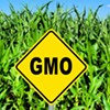Proposed National GMO Labeling Standards Would Nix Vermont Law