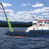 The Parmelee Post: Burlington Workers Remove Unsanctioned Pool Noodle From Lake Champlain