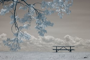 COURTESY OF AXEL'S GALLERY & FRAME SHOP - Untitled photograph by Sandra Shenk