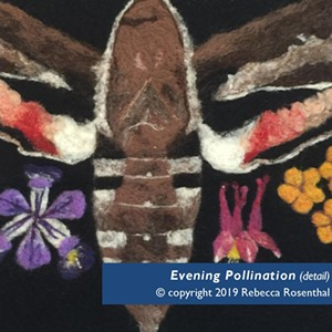 """""""Evening Pollination"""" (detail) by Rebecca Rosenthal - Uploaded by Birds of Vermont Museum"""