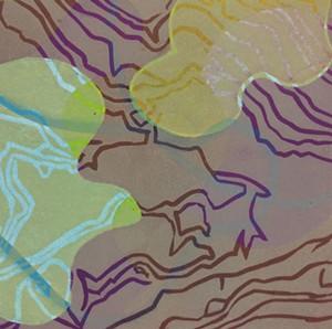 COURTESY OF TWO RIVERS PRINTMAKING STUDIO - Solarplate print by Sheri Tomek