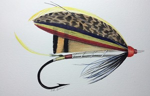 COURTESY OF FROG HOLLOW - Drawing of a fly by Sam Aronson