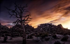"COURTESY OF MAC CENTER FOR THE ARTS - ""Hidden Valley - Joshua Tree"" by Cindy Smith"