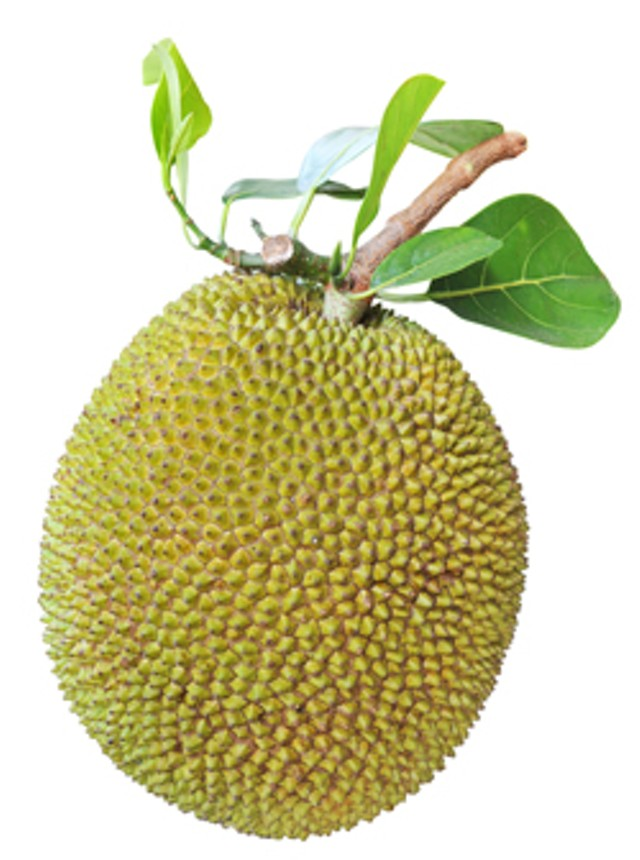 foodnews-jackfruit.jpg